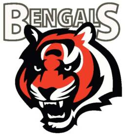 Bengals Prospect Series Atlantic Hockey Group
