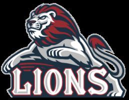 Lions Prospect Series Atlantic Hockey Group